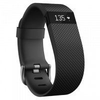 Fitbit Active Watch ($179.95)
