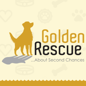 Golden Rescue Header